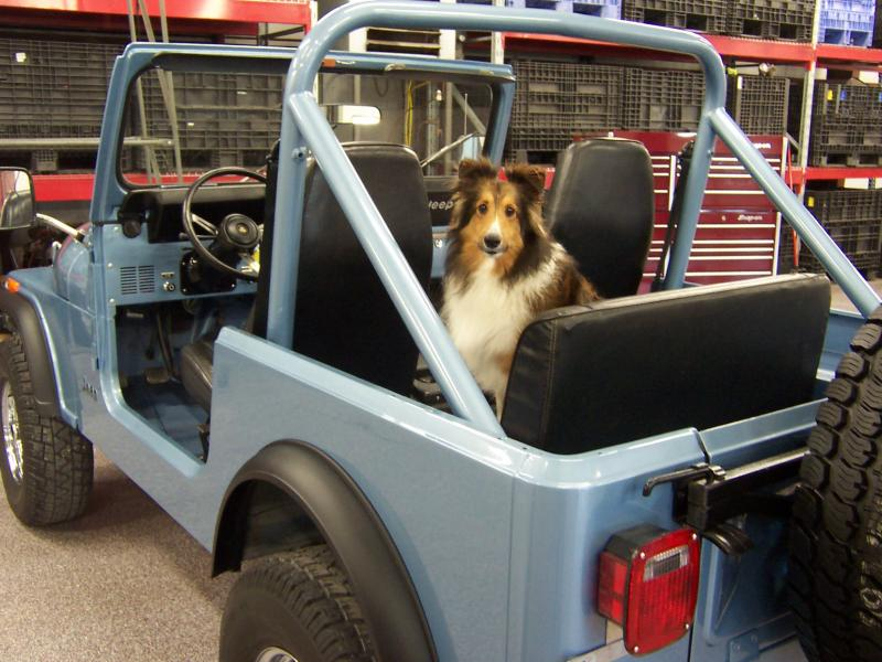 Rudy's Classic Jeeps LLC - Ultra Clean Desert 84 Jeep CJ7 ...